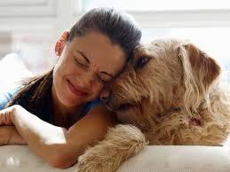 Il cane ci vuole sorridenti: così si attiva l'ossitocina e si rafforza il legame