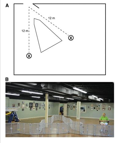 Il setting del labirinto, struttura e realtà