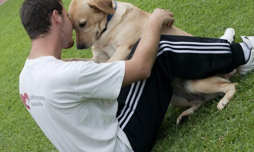 Colpo di coda al bullismo: in Sicilia la pet therapy recupera vittime e carnefici. E dal governo parte il plauso