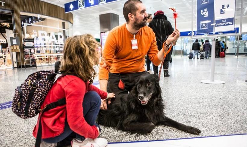 Paura di volare? A Malpensa e Linate i cani (e un coniglietto) della Maith ci danno una zampa