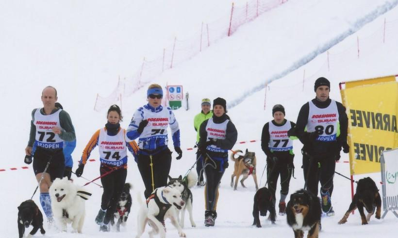 Corse a 6 zampe versione neve: nel Queyras la quarta edizione del Canicross Blanc