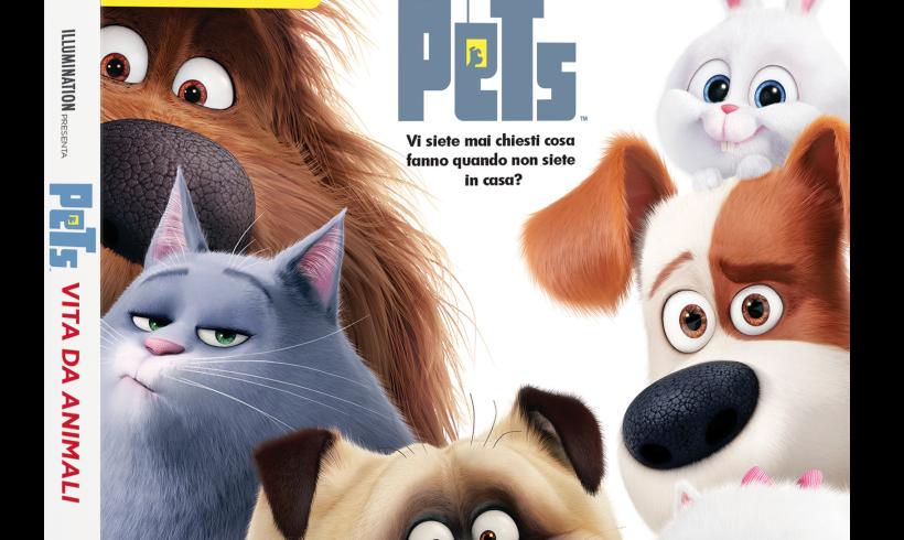 """I cine""""Pets"""" arrivano a casa: i quattro zampe campioni d'incassi ora in Dvd e Blu-Ray con minifilm e dietro le quinte"""