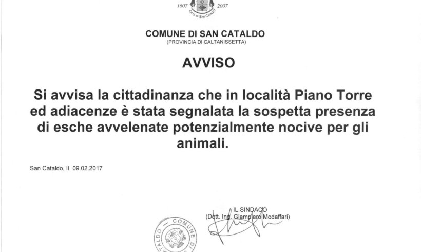 A San Cataldo è allarme avvelenamenti con decine di cani uccisi. Il WWF lancia un appello mentre la polizia municipale indaga