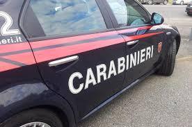 Il cane si è scagliato anche contro i carabinieri