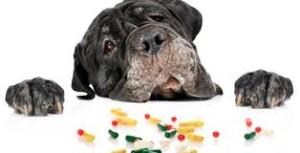 farmaci-medicine
