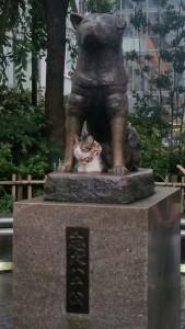 La statua davanti alla stazione e il gatto che quotidianamente vi staziona