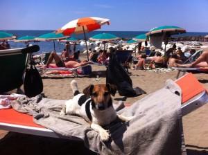 mare spiaggia zeno