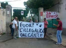 Canile di Palermo, oggi la consegna per i lavori. Intanto, nel fine settimana…