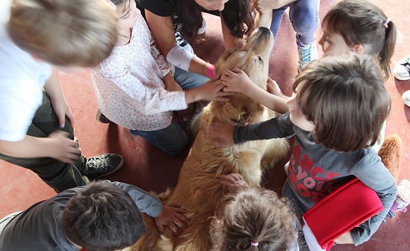 """A Fucecchio amore e rispetto per i cani si imparano in classe col progetto """"Un cane per amico"""""""
