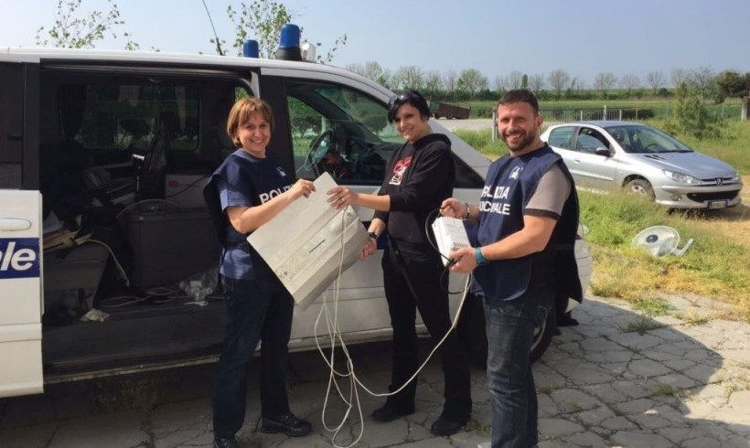 Ai canili del Reggiano le lampade sequestrate nella fabbrica della droga: in Emilia la Pasqua è più buona