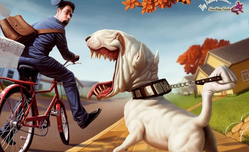 """Cani e postini, soliti guai. La scritta """"Attenti al cane"""" non esime il proprietario dalla responsabilità sui morsi di Fido"""