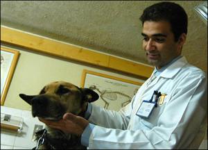 Il dottor Mohebi al lavoro