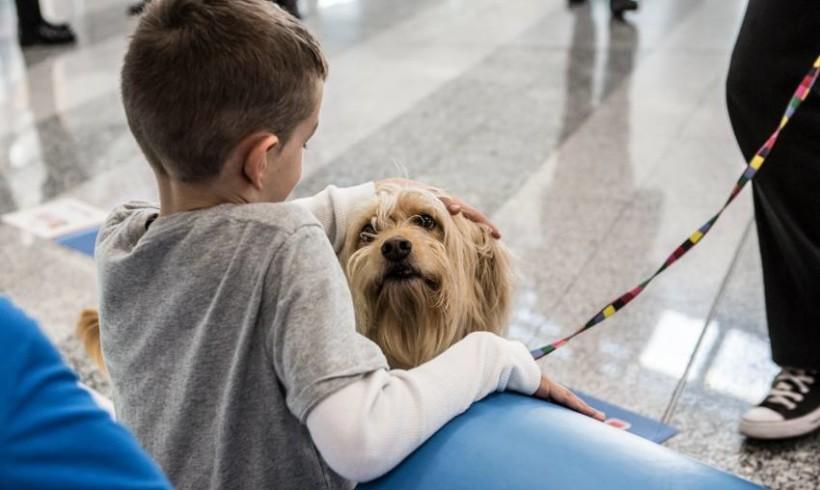 Terapie con la coda per i bambini, a Firenze giornata di studi con specialisti internazionali