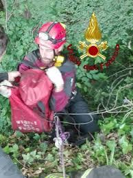 Vigili del fuoco eroi in Toscana: due cani salvati in poche ore. Uno è un randagetto con le zampine paralizzate