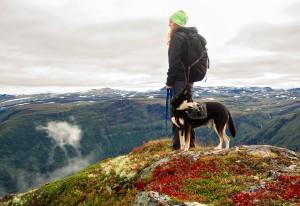 cane-montagna-trekking-escursione
