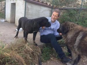 Nello Musumeci con due cani. Foto: Facebook