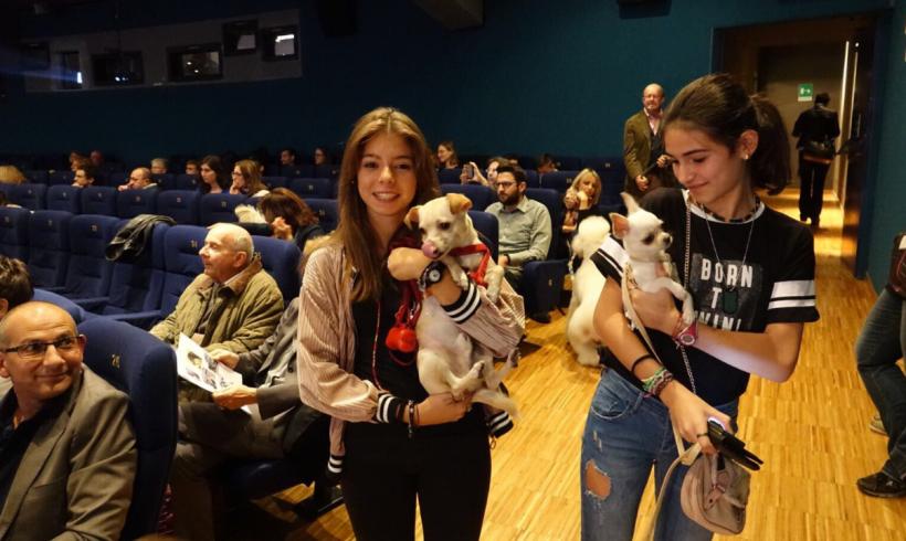 Cani al cinema! Protagonista Rin Tin Tin nella proiezione a 6 zampe di Torino
