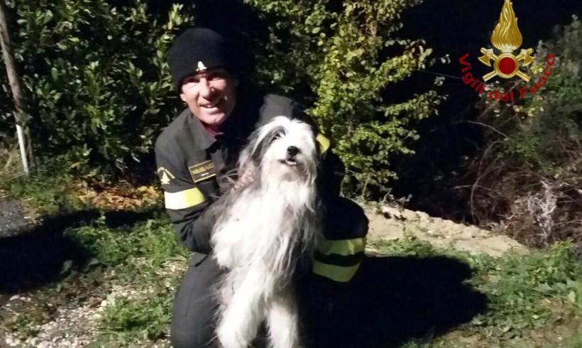Anziano e cieco scivola nel fossato: lo recuperano i pompieri in modalità speleo