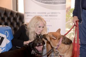 Ivana Spagna durante la presentazione della campagna a Roma. Foto: Flavio Di Properzio (Animalisti italiani onlus)