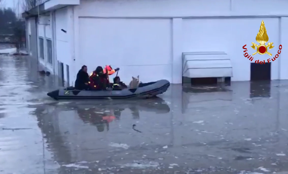 Cane con tre persone salvato dalle acque del Parma esondate a Colorno: erano in trappola
