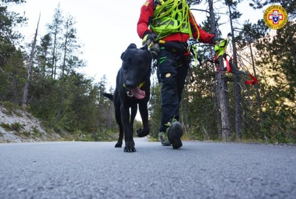 Cani da ricerca, 12 nuovi brevetti a quattro zampe rilasciati dal Soccorso Alpino
