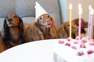 compleanno-torta-festa