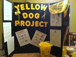 the-yellow-dog-project-e-un-movimento-globale-basato-sul-passaparola-the-yellow-dog-project_facebook
