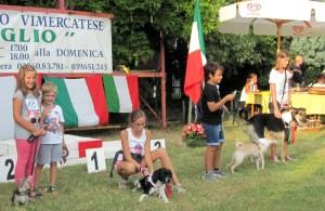 Tra i golden  dog c'è anche Pupo, ospite del rifugio di Enpa Monza e Brianza