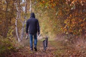 passeggiata-bosco