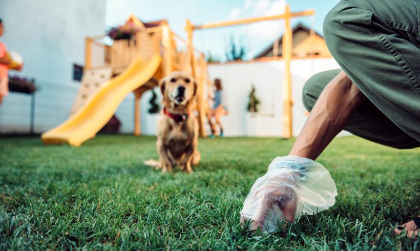 Tutti netturbini a 6 zampe: Firenze è più pulita col dog plogging di Follow Your Pet
