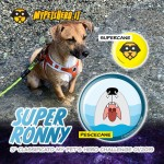ronny-mph-challenge