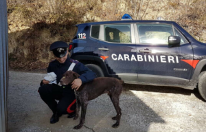 bracco-tedesco-carabinieri-saludecio
