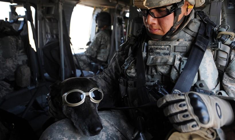 Per i cani soldato a stelle e strisce arrivano i visori a realtà aumentata