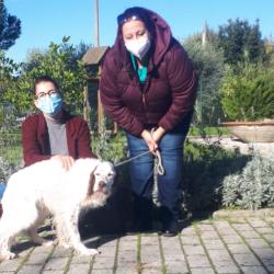 Una famiglia per Bibe, adottato dal rifugio il cane più anziano di Scandicci